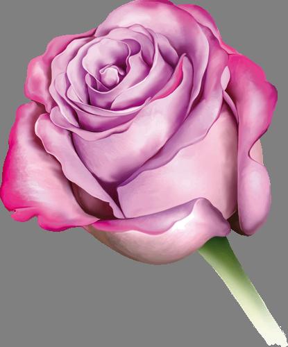 Наклейка «Розовая роза»Цветы<br><br>