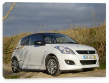 Swift 3D, Suzuki Swift 3D (арт. am2521)