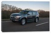 TrailBlazer, Chevrolet TrailBlazer (арт. am1777)