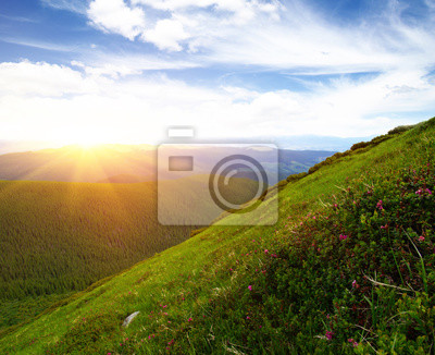 "Постер Природа ""Постер 141054052"", 25x20 см, на бумаге от Artwall"
