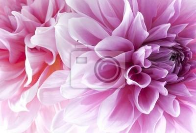 """Постер Цветы """"Постер 35120872"""", 29x20 см, на бумаге от Artwall"""