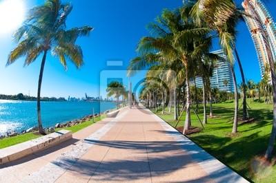 """Постер Города и карты """"Красивый парк, South Pointe в Майами-Бич, Флорида"""", 30x20 см, на бумаге от Artwall"""