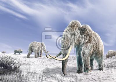 """Постер Животные """"Два мамонта в поле покрыто снегом."""", 28x20 см, на бумаге от Artwall"""