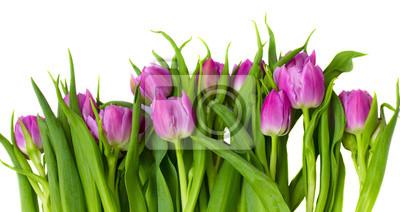 """Постер Цветы """"Постер 39532361"""", 38x20 см, на бумаге от Artwall"""