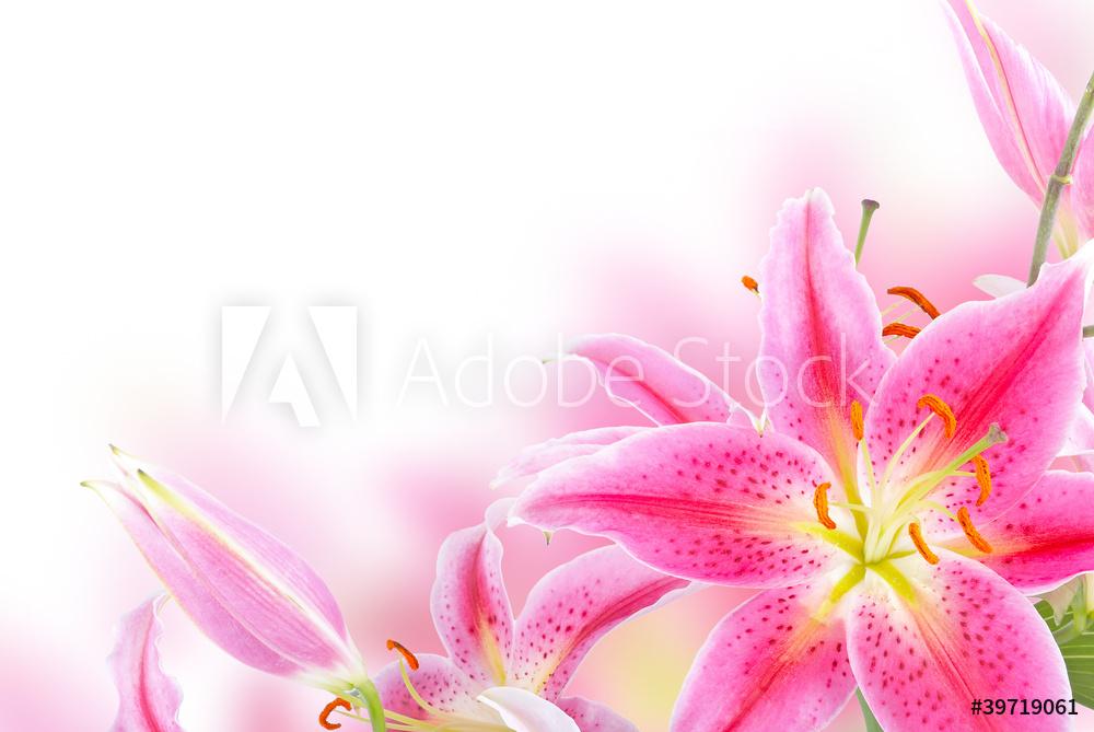 """Постер Цветы """"Постер 39719061"""", 30x20 см, на бумаге от Artwall"""