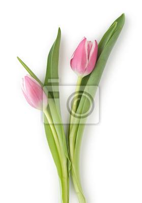 """Постер Цветы """"Постер 39741910"""", 20x29 см, на бумаге от Artwall"""