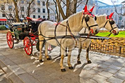 """Постер Города и карты """"Fiaker конный экипаж в Вене, Австрия"""", 30x20 см, на бумаге от Artwall"""