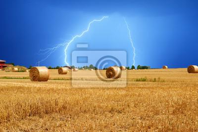 """Постер Природа """"Молния над полем"""", 30x20 см, на бумаге от Artwall"""