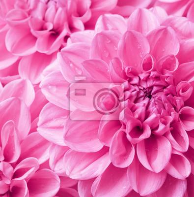 """Постер Цветы """"Постер 43558826"""", 20x20 см, на бумаге от Artwall"""