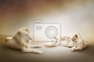 """Постер Животные """"Постер 44040193"""", 30x20 см, на бумаге от Artwall"""