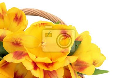 """Постер Цветы """"Постер 46441647"""", 30x20 см, на бумаге от Artwall"""
