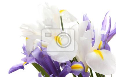 """Постер Цветы """"Постер 49066231"""", 30x20 см, на бумаге от Artwall"""