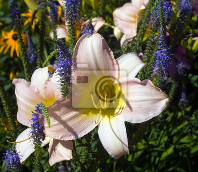 """Постер Цветы """"Постер 52709529"""", 23x20 см, на бумаге от Artwall"""