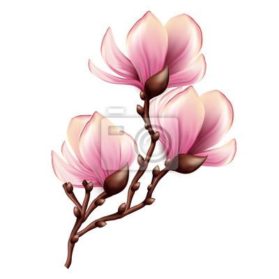 """Постер Цветы """"Постер 53022414"""", 20x20 см, на бумаге от Artwall"""