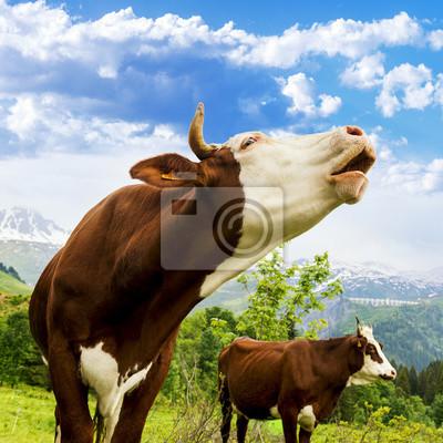 """Постер Животные """"Постер 54537927"""", 20x20 см, на бумаге от Artwall"""