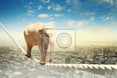 """Постер Животные """"Постер 54866435"""", 30x20 см, на бумаге от Artwall"""
