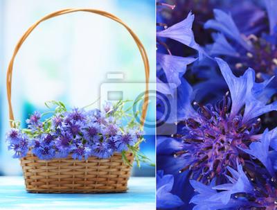 """Постер Цветы """"Постер 62944248"""", 26x20 см, на бумаге от Artwall"""