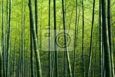 """Постер """"Постер 64166607"""", 30x20 см, на бумаге от Artwall"""