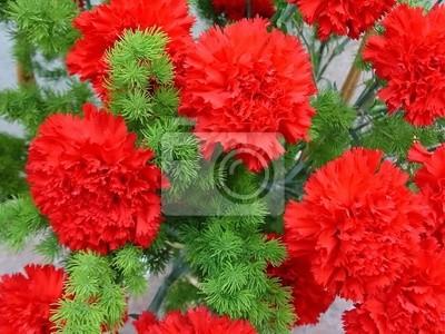 """Постер Цветы """"Постер 705356"""", 27x20 см, на бумаге от Artwall"""