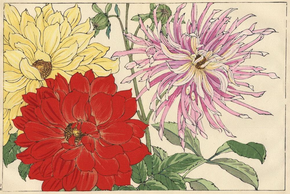 """Искусство, картина """"Танигами Конан «Дахлия»"""", 30x20 см, на бумаге от Artwall"""