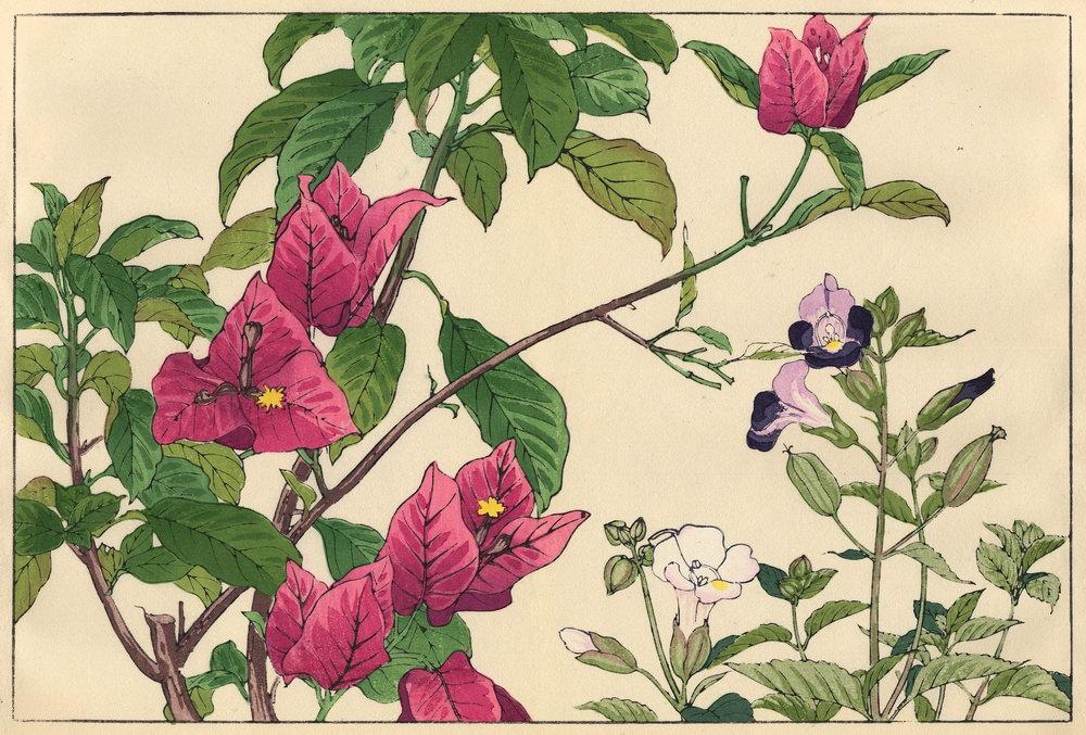 """Искусство, картина """"Танигами Конан «Бугенвиллия и торения»"""", 30x20 см, на бумаге от Artwall"""