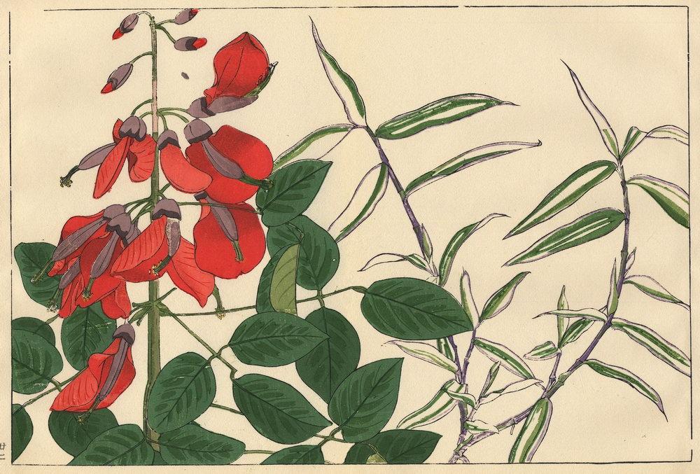 """Искусство, картина """"Танигами Конан «Эритрина (коралловое дерево) и просо»"""", 30x20 см, на бумаге от Artwall"""