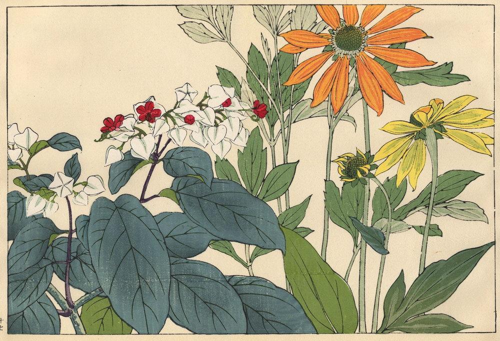 """Искусство, картина """"Танигами Конан «Стрептокарпус и фиалка»"""", 29x20 см, на бумаге от Artwall"""
