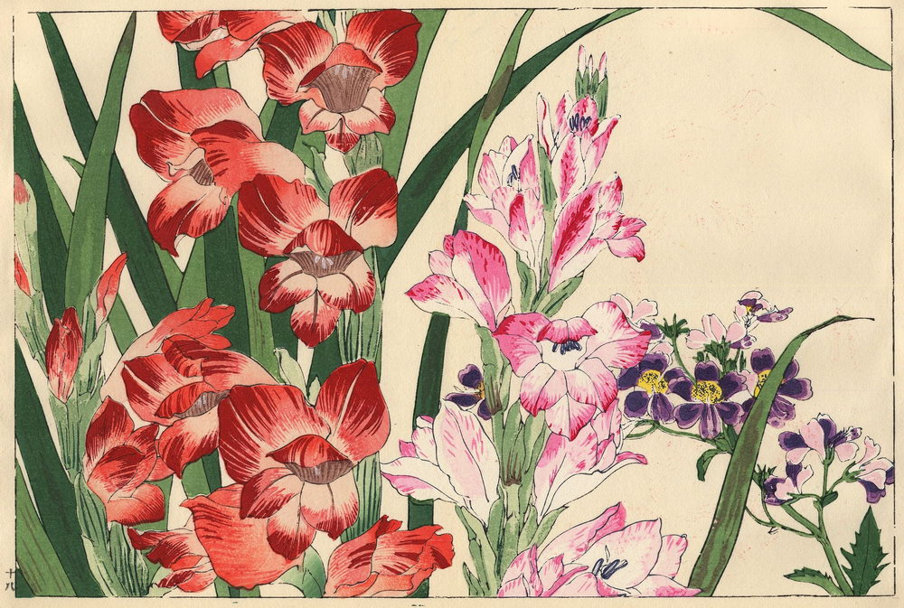 "Искусство, картина ""Танигами Конан «Гладиолусы»"", 30x20 см, на бумаге от Artwall"