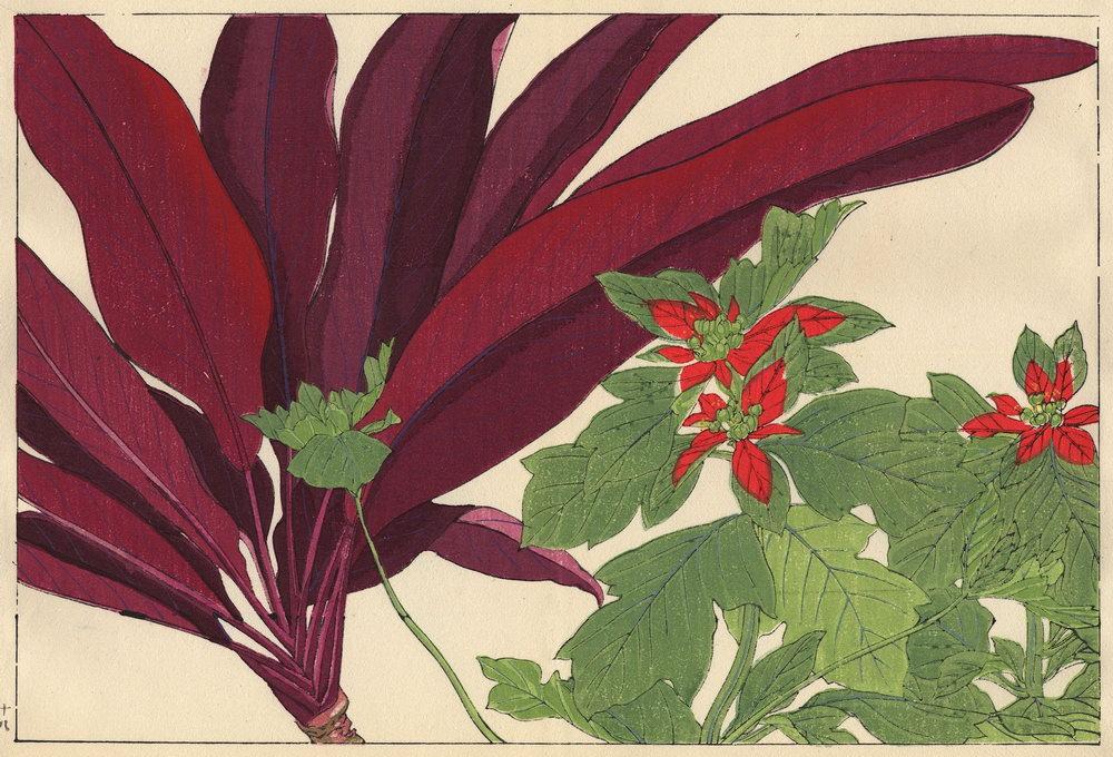 """Искусство, картина """"Танигами Конан «Драцена и молочай»"""", 29x20 см, на бумаге от Artwall"""