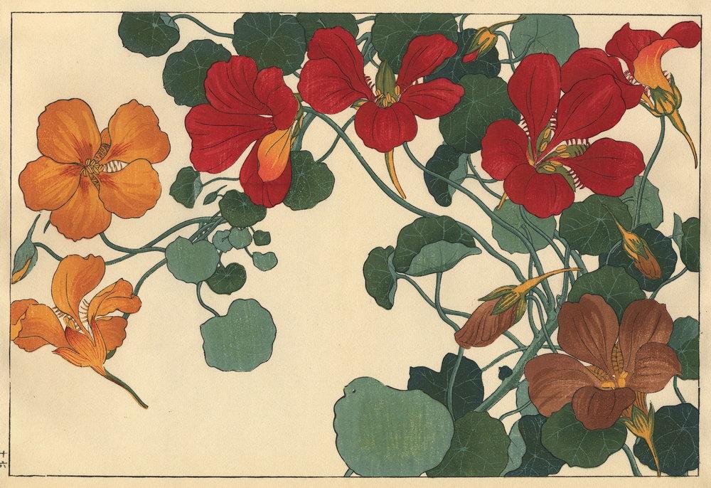 """Искусство, картина """"Танигами Конан «Настурция»"""", 29x20 см, на бумаге от Artwall"""