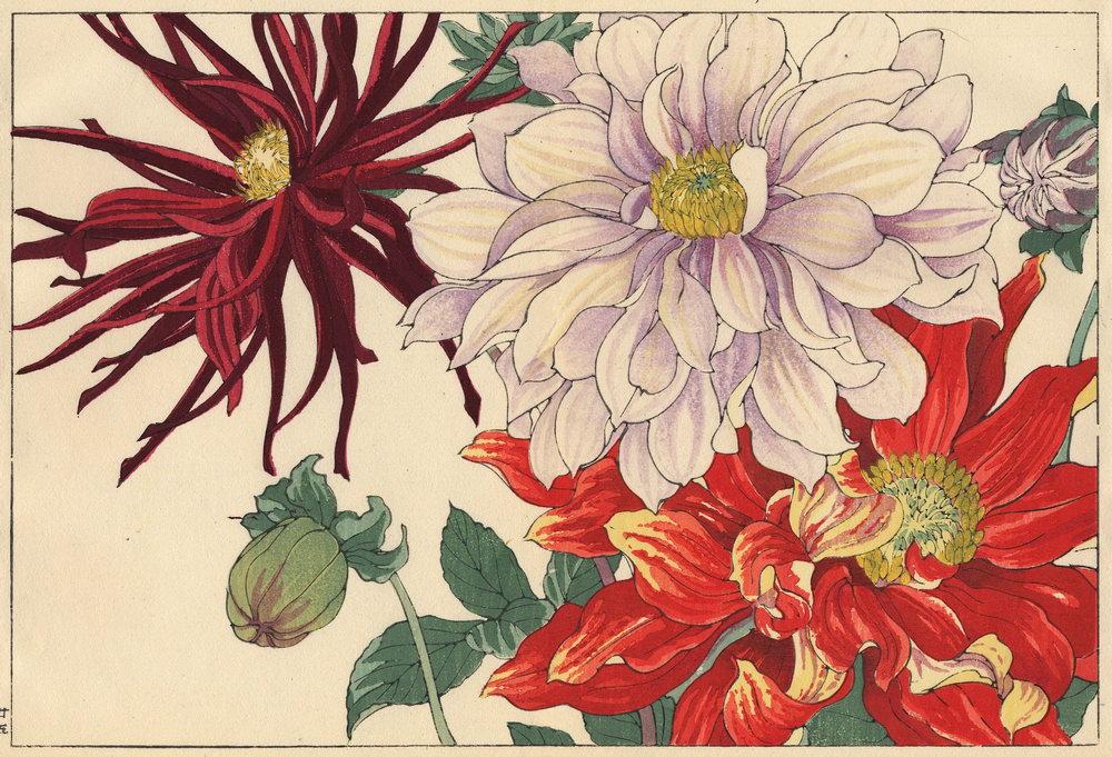"""Искусство, картина """"Танигами Конан «Георгины»"""", 29x20 см, на бумаге от Artwall"""