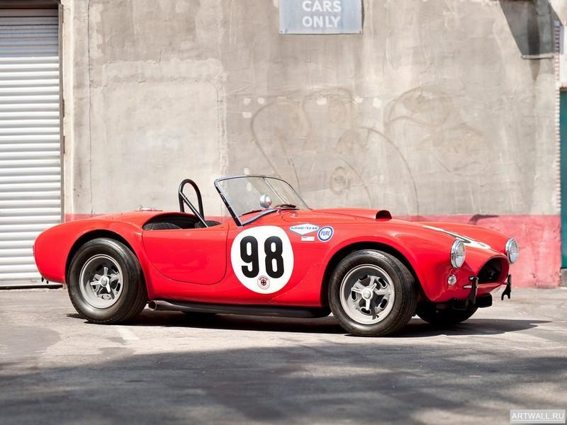 """Постер """"Shelby Cobra 289 Factory Team Car '1963"""", 27x20 см, на бумаге от Artwall"""