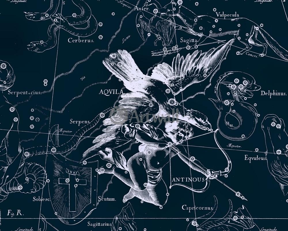 """Постер Космос """"Aqvila, Antinous - Орел, Антиной"""", 25x20 см, на бумаге от Artwall"""