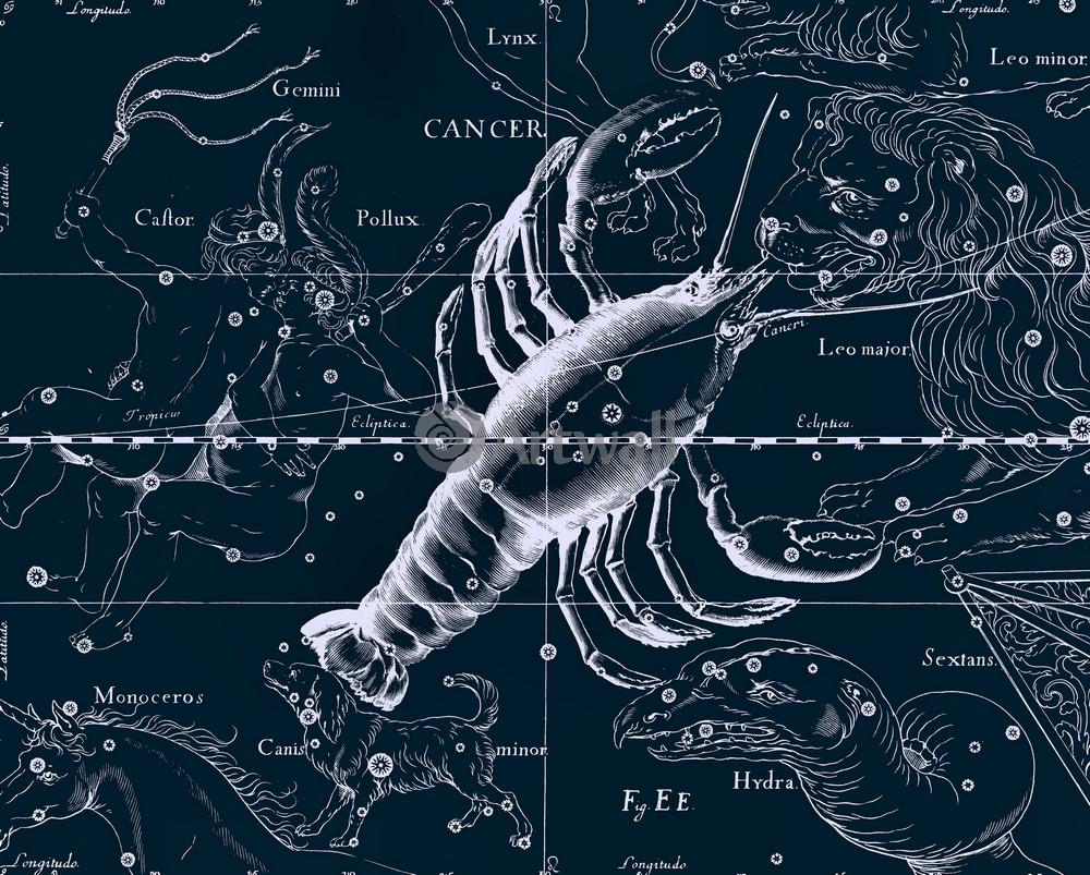 """Постер Космос """"Cancer - Рак"""", 25x20 см, на бумаге от Artwall"""