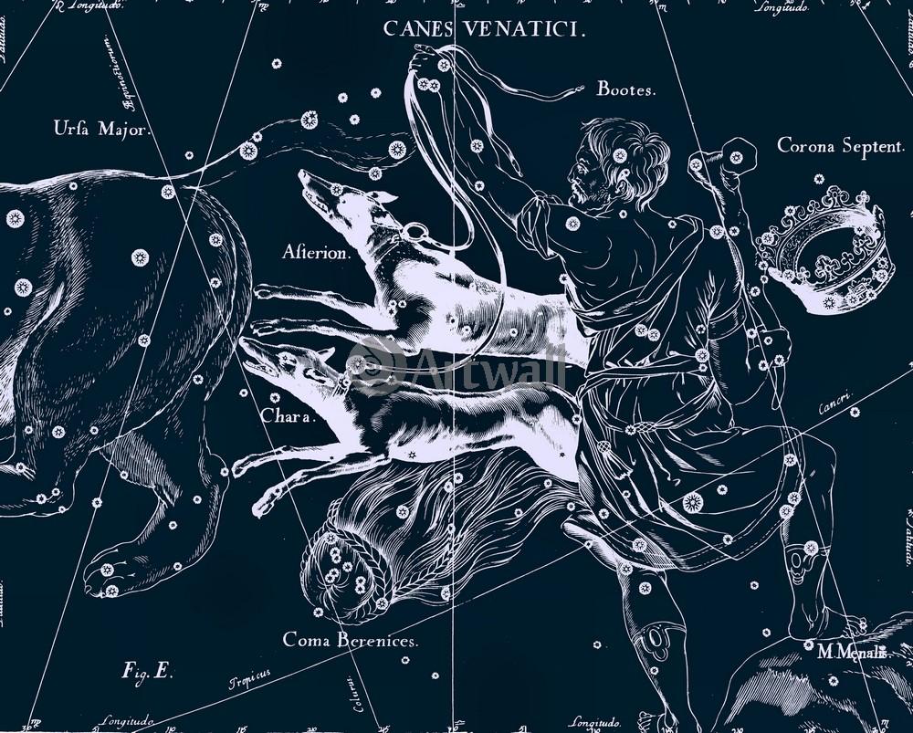 Картина часы Canes Venatici - Гончие Псы на холсте любого размера
