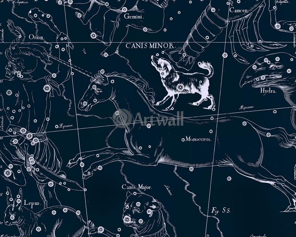 """Постер Космос """"Canis Minor - Малый Пес"""", 25x20 см, на бумаге от Artwall"""