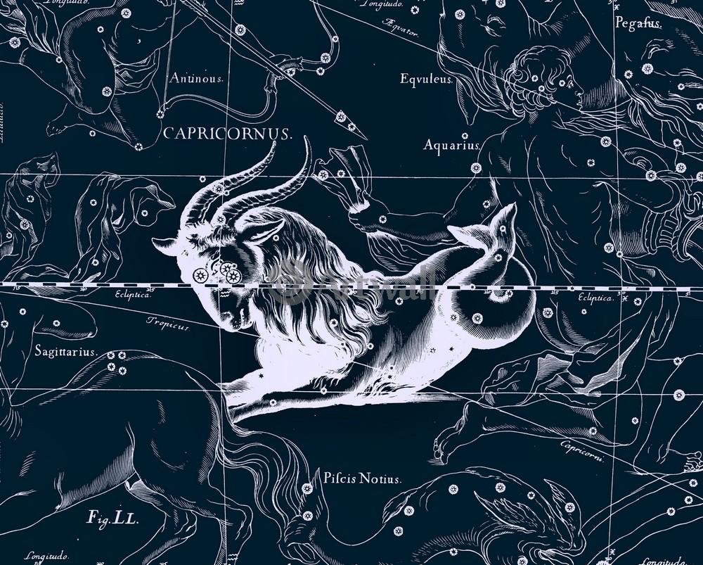 """Постер Космос """"Capricornus - Козерог"""", 25x20 см, на бумаге от Artwall"""