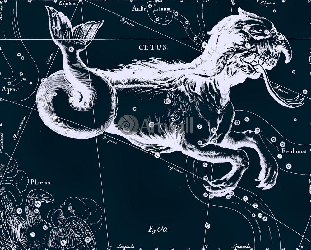 """Постер Космос """"Cetus - Кит"""", 25x20 см, на бумаге от Artwall"""