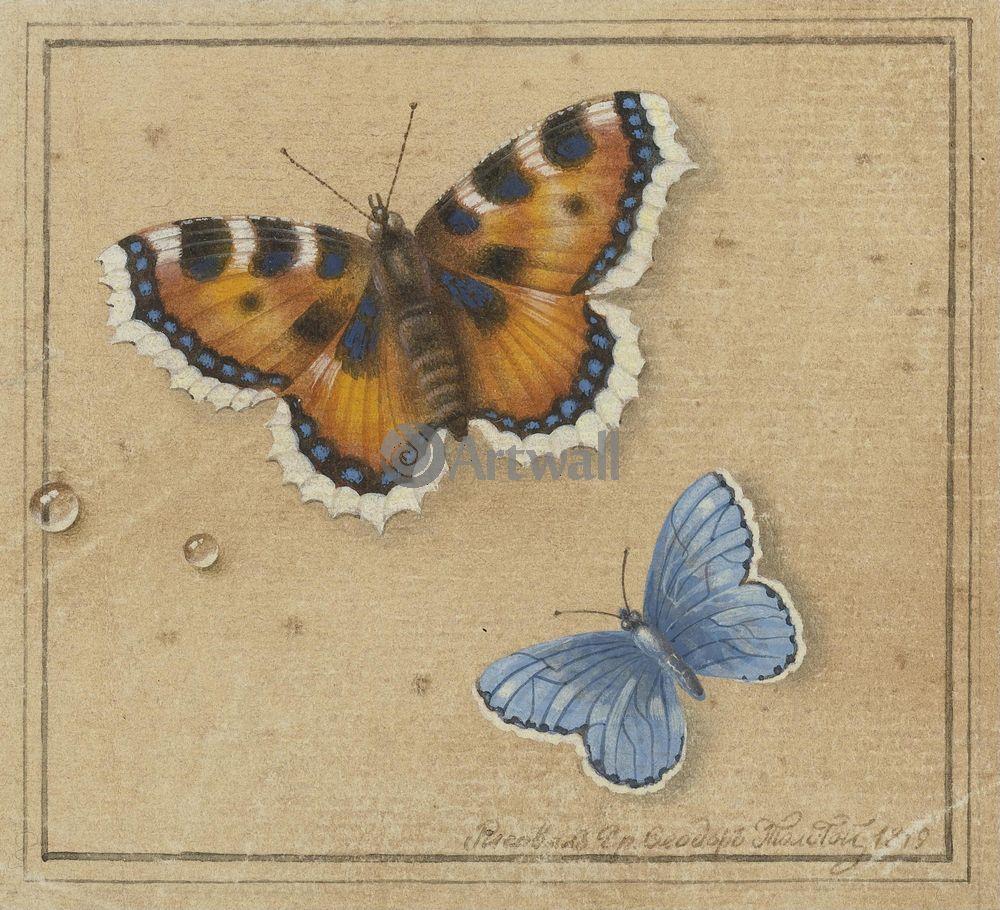 "Художники, картина ""Бабочки"", 22x20 см, на бумаге от Artwall"