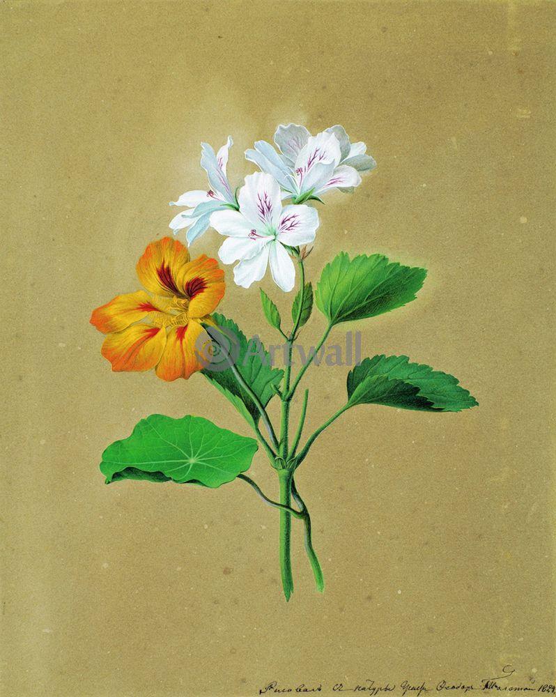 "Художники, картина ""Настурция"", 20x25 см, на бумаге от Artwall"