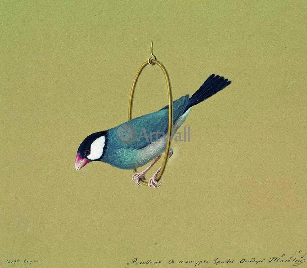 """Художники, картина """"Птичка в кольце"""", 23x20 см, на бумаге от Artwall"""