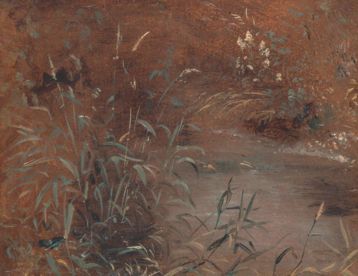 "Художники, картина ""Камыши у пруда"", 26x20 см, на бумаге от Artwall"
