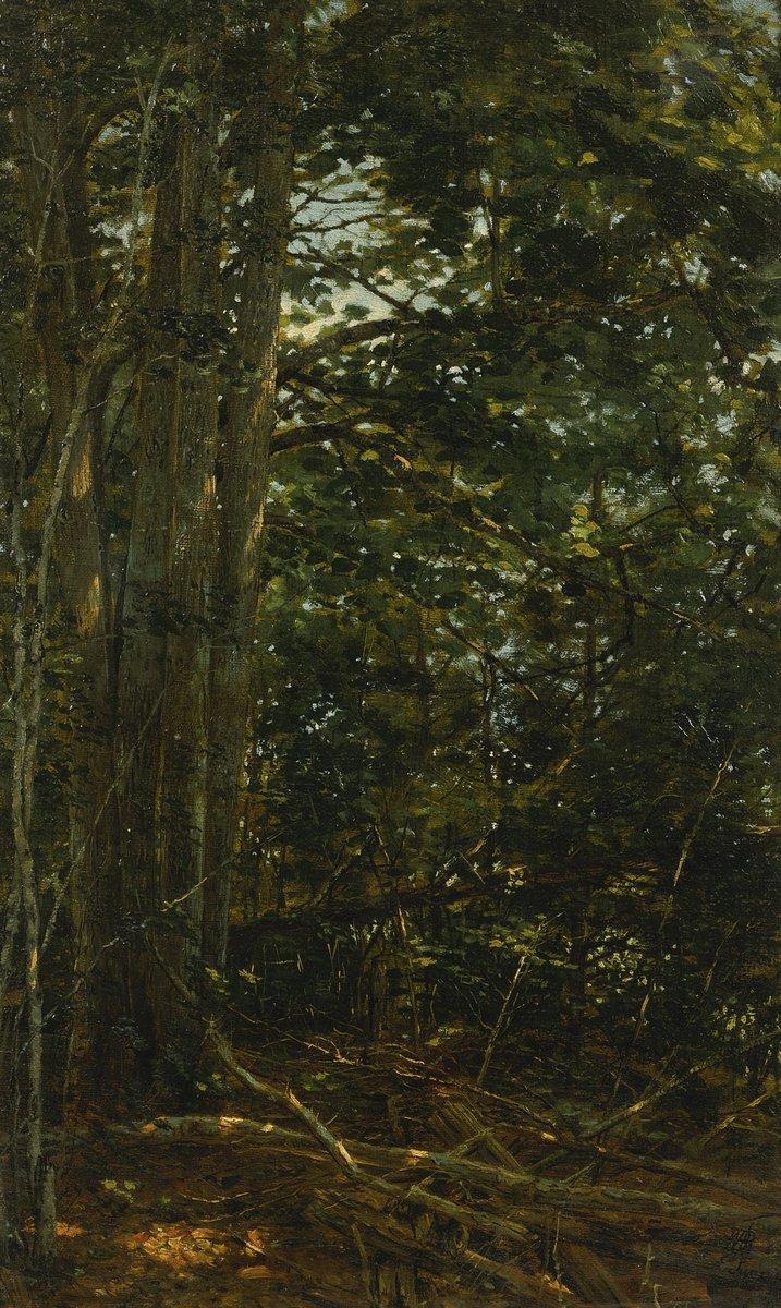 "Художники, картина ""Бейкер Уильям «Чаща»"", 20x33 см, на бумаге от Artwall"