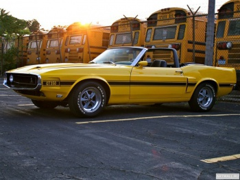 Shelby GT350 Convertible '1969,