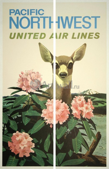 Модульное панно Pacific Northwest, United Air Lines, Туризм