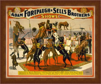 Магнитная картина The Adam Forepaugh & Sells Brothers, America's Greatest Shows Consolidated (2),