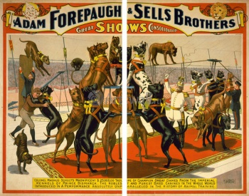 Модульное панно The Adam Forepaugh & Sells Brothers, America's Greatest Shows Consolidated (2), Цирк