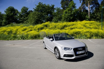 Audi A3 Cabriolet (арт. am1101),