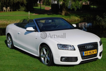 Audi A5 Cabriolet (арт. am1168),