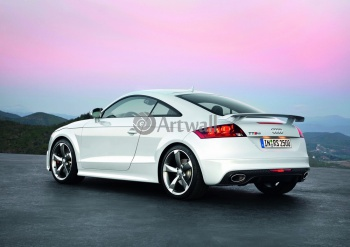 Audi TT RS Coupe (арт. am1400),